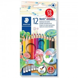 STAEDTLER  wiped wood color pen (12 colors)