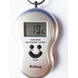WH-A04 10G-45KG Portable Electronic Hanging Luggage Fishing Digital Weighing