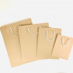 Kraft paper bag ( large )